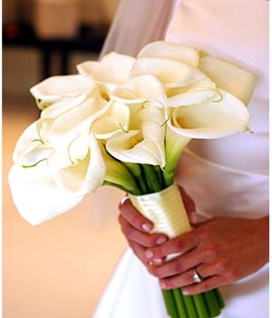 Oakland florists in oakland ca florist flower shop oakland ca apple round a round bouquet is a traditional wedding bouquet of flowers greenery and fillers for more contemporary looks round bouquets are made with no mightylinksfo